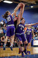 Long Island Lutheran Crusaders vs St. Rose Purple Roses girls basketball at the Holmdel HS gymnasium, Holmdel, NJ, Saturday, January 25, 2015.  St. Rose defeated LuHi by the score of 46 - 45.