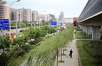 CHINA. Beijing. The Tiantongyuan suburb north of Beijing.2009