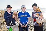 Enjoying a stroll in Banna on Tuesday, l to r: Sarah and Cory O'Brien and Michelle Ward with Toby and Bob the dogs.