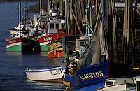 Europe/France/Pays de la Loire/44/Loire-Atlantique/Env de Bourgneuf-en-Retz : Le port du Collet