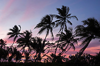 The sunset tints the tropical clouds pink and orange over the palms and pandanus trees of Majuro Atoll's Eneko Island in the Marshall Islands.