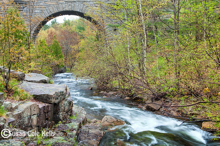 A stone bridge at Duck Brook in Acadia National Park, Downeast, ME, USA