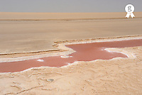 Tunisia, Chott el Jerid, Red stream of water in dry salt lake (Licence this image exclusively with Getty: http://www.gettyimages.com/detail/sb10069713ab-001 )