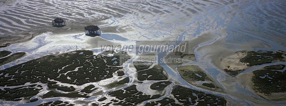 Europe/France/Aquitaine/33/Gironde: L'Ile aux oiseaux et ses cabanes tchanquées -réserve naturelle -vue aérienne