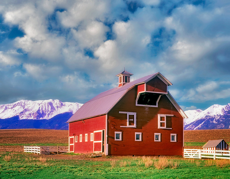 Barn with white trim and pasture with Wallowa Mountains. Oregon