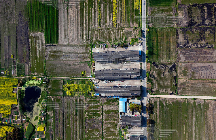 Farm buildings surrounded by fields of young green crops. /Felix Features