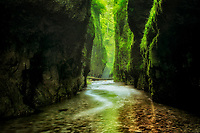 Oneonta Gorge and creek. Columbia River Gorge National Scenic Area, Oregon