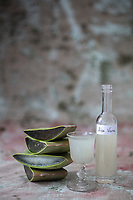 Gastronomie générale : Aloe Vera // General gastronomy: Aloe Vera