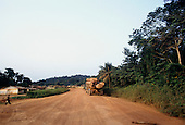La Gongue, Gabon. Okume tree trunks being transported by road through the timber workers settlement.