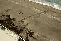 Loggerhead sea turtle nesting inhibited by sea wall construction, Florida, Atlantic Ocean