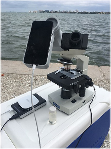 The HABscope set-up. The HABscope, developed by NOAA with funding from NASA, consists of a microscope with an iPod attached, embedded with artificially intelligent software to identify the swimming pattern of the phytoplankton Karenia