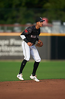 Fayetteville Woodpeckers shortstop Jeremy Pena (2) during a Carolina League game against the Down East Wood Ducks on August 13, 2019 at SEGRA Stadium in Fayetteville, North Carolina.  Fayetteville defeated Down East 5-3.  (Mike Janes/Four Seam Images)