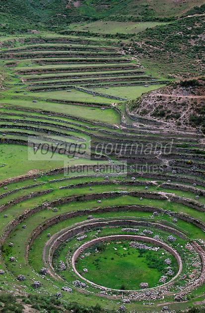 Amérique/Amérique du Sud/Pérou/Moray : Cultures en terrasses - Epoque Inca