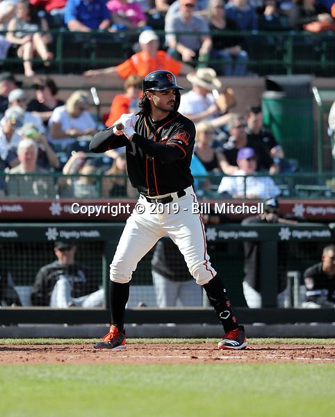 Aramis Garcia - San Francisco Giants 2019 spring training (Bill Mitchell)