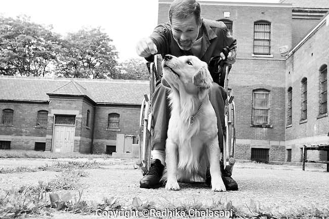 BEACON, NEW YORK:  Ed trains Midas to fetch items for someone in a wheelchair during class for the Puppies Behind Bars (PPB) program at Fishkill Correctional Facility. The program prepares puppies to be service dogs and consists of one day of class a week on topics such as obedience training, grooming, basic care of the dogs. The rest of the week prisoners keep the dogs with them as they go about their daily routine in the prison and train them on their own.