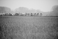 peloton crosses a field with 7 minutes behind a 5 man breakaway<br /> <br /> 57th E3 Harelbeke 2014