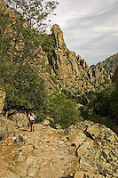Corsica, Walker on the paved mule pack road in the lower Tavignano Gorges near Corte. France. Track leads eventually to Porto..