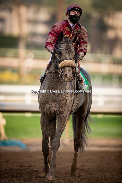 January 03, 2021: Roman Centurian with Juan Hernandez aboard breaks his maiden at Santa Anita Park in Arcadia, California on January 3, 2021. Evers/Eclipse Sportswire/CSM