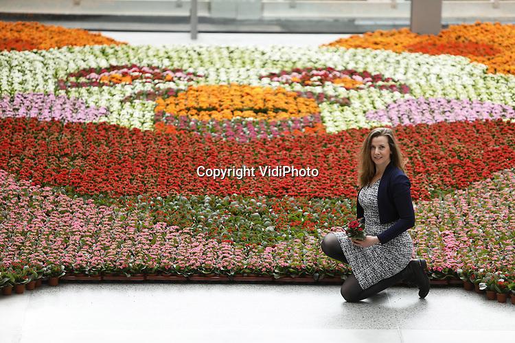 Foto: VidiPhoto<br /> <br /> ROTTERDAM – Kunstenares Adriënne Rombout uit Delft en kalanchoëkweker Rene van Dop uit 's-Gravenzande controleren dinsdag de bloeiende Compassiebeer bij de hoofdingang van het Erasmus MC in Rotterdam. Het reusachtig bloemenmozaïek (ruim 75 m2) van de knuffelbeer staat op dit momenty in volle bloei. De Compassiebeer is een initiatief Rombout in samenwerking met kwekerscollectief Always Kalanchoë om het zorgpersoneel, patiënten en bezoekers een hart onder de riem te steken. Het idee ontstond door de diverse berentochten die in heel Nederland worden georganiseerd. Kinderen gaan daarbij op zoek naar (knuffel)beren achter ramen van huizen. Ook de (jonge) patiënten kunnen nu in het ziekenhuis op berenjacht. Kwekerij Vilosa uit 's-Gravenzande stelde de ruim 10.000 kleurrijke Kalanchoës ter beschikking. Ook in het Wilhelmina Kinderziekenhuis in Utrecht is een Compassiebeer aangelegd. De kleurrijke planten uit het Rotterdamse mozaïek worden aan het eind van deze week verdeeld over de diverse afdelingen van het ziekenhuis.