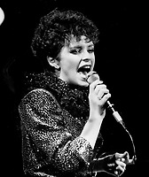 Sheena Easton's gamin charm delights fans. Now she only has to polish her repertoire.
