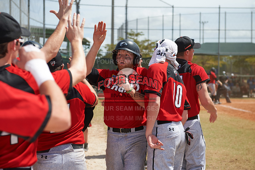 Edgewood College Eagles Brodie Engel (3) high fives teammates after scoring a run during a game against the New York University Violets on March 14, 2017 at Terry Park in Fort Myers, Florida.  NYU defeated Edgewood 12-7.  (Mike Janes/Four Seam Images)