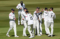 Olly Stone of Warwickshire celebrates taking the wicket of Daniel Lawrence during Warwickshire CCC vs Essex CCC, LV Insurance County Championship Group 1 Cricket at Edgbaston Stadium on 22nd April 2021