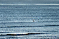 Paddle board surfers head out to catch a wave, Coast Guard Beach, Cape Cod, Massachusetts, USA