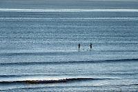 Paddle board surfers head out to catch a wave, Coast Guard Beach, Cape Cod, Massachusetts, USA