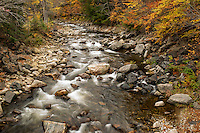 Mountain stream in autumn, Vermont, USA