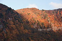 Shadow and light play with the bright autumn colours in the mountains surrounding Nagano City, Japan.