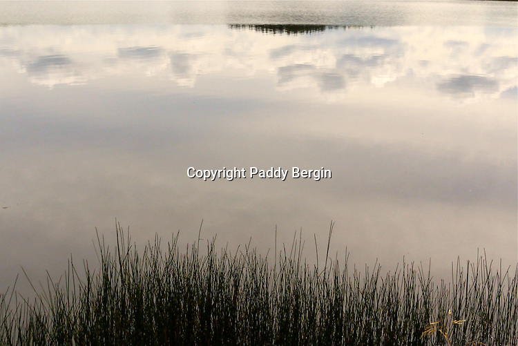 Reflections in the water. This photo was taken at Llyn Frongoch in close proximity to the village of Trisant, close to the Aberystwyth to Devil's Bridge road. Frongoch is a fly only lake and is regularly stocked with both brown and rainbow trout. <br /> <br /> Stock Photo by Paddy Bergin
