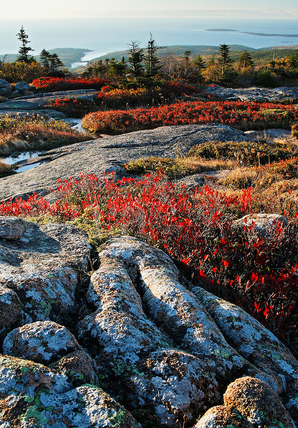 View from Cadillac Mountain during an autumn sunrise, Acadia National Park, Hancock County, Maine, US