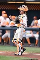Tennessee Volunteers catcher Benito Santiago (31) during game one of a double header against the UC Irvine Anteaters at Lindsey Nelson Stadium on March 12, 2016 in Knoxville, Tennessee. The Volunteers defeated the Anteaters 14-4. (Tony Farlow/Four Seam Images)