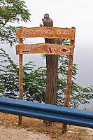 Wooden sign saying Dalmatinska Kuca 2000 m advertising a restaurant with Dalmatian kitchen. Bottle of wine and glass and a fish. Potmje village, Dingac wine region, Peljesac peninsula. Dingac village and region. Peljesac peninsula. Dalmatian Coast, Croatia, Europe.