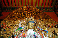The Historical Buddha, Sakyamuni, Sakya Thukpa in Tibetan, whose teachings in the 5th century BC, founded Buddhist philosophy, draped with prayer scarves in the Main Assembly Hall, Drepung Monastery, Lhasa, Tibet, China..