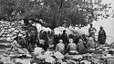 Iraq 1963 .Meeting of peshmergas under a tree.Irak 1963.Reunion de peshmergas sous un arbre