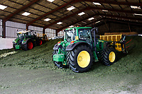 Photo: Richard Lane/Richard Lane Photography. Tractors with buck rakes filling an indoor silage clamp during 1st cut grass silage making near Wincanton, Somerset. 15/05/2018.