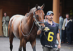 8 August 2009: GIO PONTI in the paddock for the 27th running of the G1 Arlington Million at Arlington Park in Arlington Heights, Illinois.