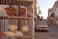 Old abandoned car and caged hens in the street, Al-Qusair, Egypt.