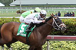 March 28, 2015:  After dueling in the stretch, #5 Commissioner (KY) with jockey Javier Castellano on board wins the Skip Away G3 Stakes on Florida Derby Day at Gulfstream Park  in Hallandale Beach, Florida.    Liz Lamont/ESW/CSM