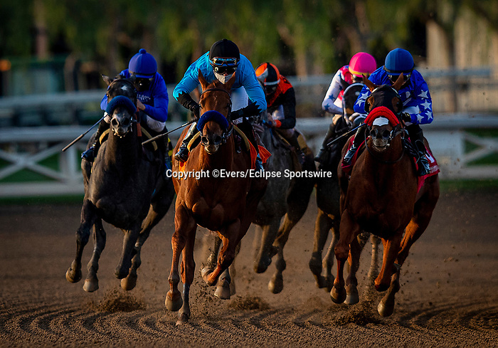 January 02, 2021: Kalypso with Joel Rosario (black cap) storms off the turn to win the Santa Ynez Stakes at Santa Anita Park in Arcadia, California on January 2, 2021. Evers/Eclipse Sportswire/CSM