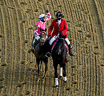 May 15, 2021 : Rombauer, #6, ridden by jockey Flavien Prat wins the Preakness Stakes on Preakness Stakes Day at Pimlico Race Track in Baltimore, Maryland on May 15, 2021. John Voorhees/Eclipse Sportswire/CSM