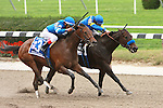26 09 2009: 2-time champion Indian Blessing (inside)with John Velazquez aboard, wins a hard fought battle in the 15th running of the Grade II Gallant Bloomat 6 1/2 furlongs at Belmont Park, Elmont, NY