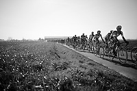 peloton with 45 km's to go<br /> <br /> 3 Days of West-Flanders 2015<br /> stage 2: Nieuwpoort - Ichtegem 184km