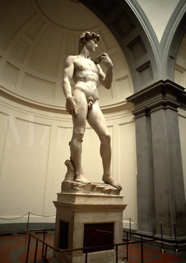 Michelangelo's famous sculpture of David. Florence, Italy.