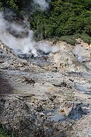 St. Lucia.  Steam Vents and Boiling Mud in the Soufriere Caldera.