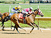C. Lady's Warrior winning at Delaware Park on 6/6/12