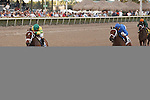 Onlyforyou with jockey Javier Castellano up goes wire to wire to win the Forward Gal(G2) for 3yo fillies at Gulfstream Park, Hallandale Beach Florida. 01-25-2014