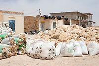 Bir al-Ghanem, south of Tripoli, Libya - Bags of Wool