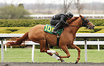 April 03, 2014: Hip 108 Galileo (GB) - Heart Shaped consigned by Sequel Bloodstock worked 1/8 in 10:2 .  Candice Chavez/ESW/CSM